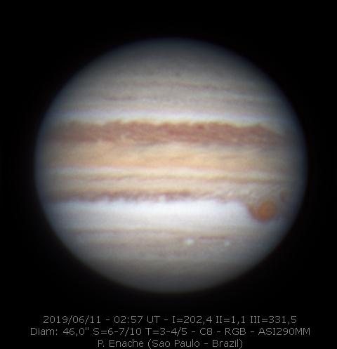 2019-06-11-0257_7-RGB-P_Enache